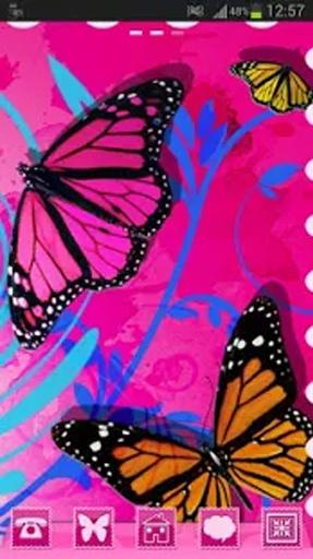 GO桌面主題蝴蝶