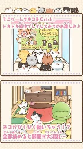 滑动猫咪~美喵之时~截图3