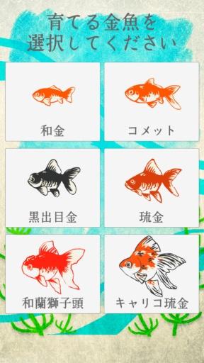 治愈系-金鱼养成