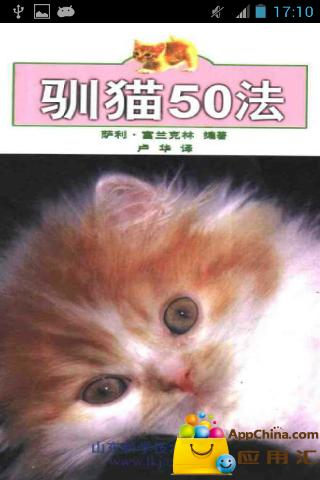 实用驯猫方法