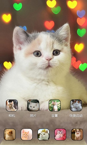 萌猫咪-宝软3D主题