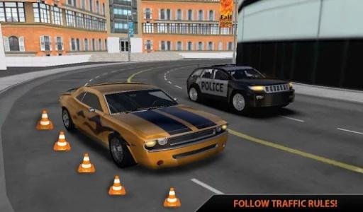 真正的手动档汽车模拟器3D截图2