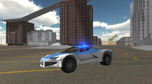 Police Car Driving Simulator截图1