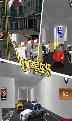 停车大师3D2截图1