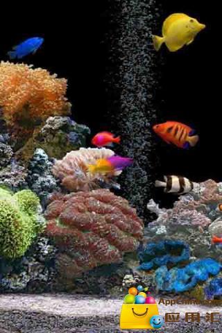 3d海洋世界动态壁纸