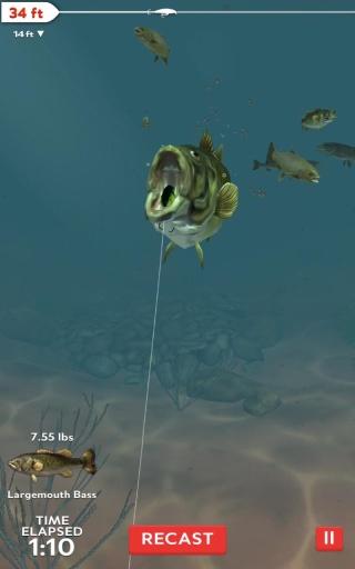 職業釣魚的日常截圖2