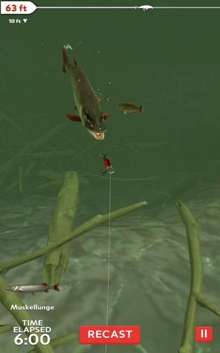 職業釣魚的日常截圖4