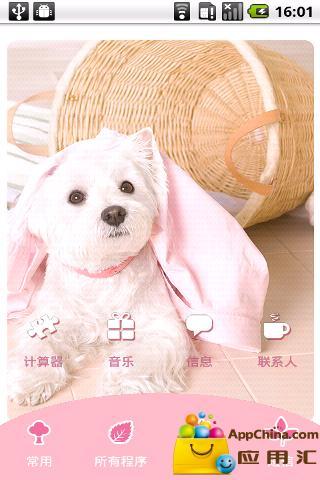 YOO主题-卖萌狗狗