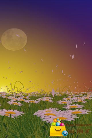 唯美雏菊动态壁纸截图2