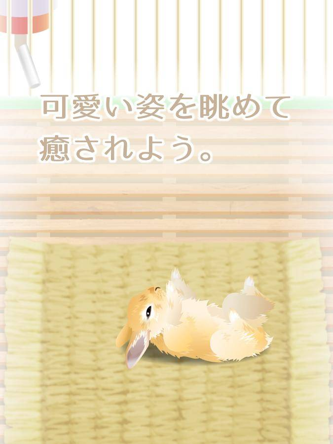 治愈系兔子养成截图3
