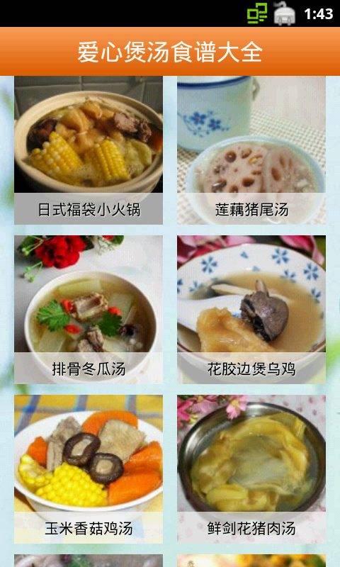 爱心煲汤食谱大全截图1
