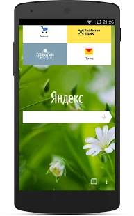 Yandex Browser Alpha截图1