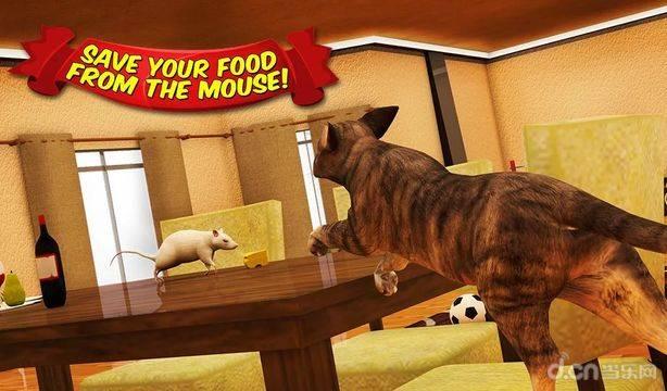 愤怒的猫和老鼠截图4