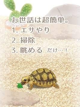 糖果彩平台下载安装官方版日志