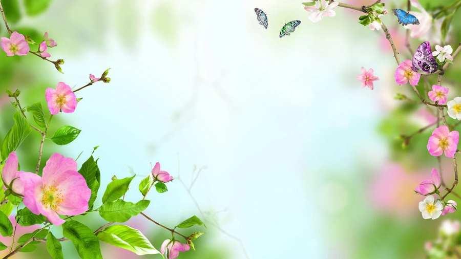 花卉动态壁纸截图3