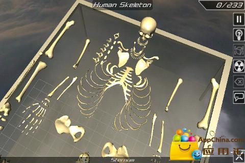 3D骨骼拆解截图4