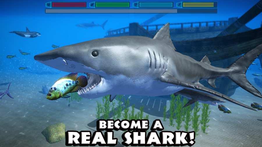 究极鲨鱼模拟截图0