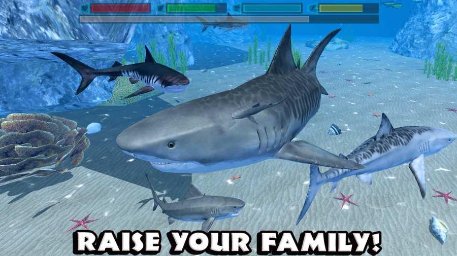 究极鲨鱼模拟截图4
