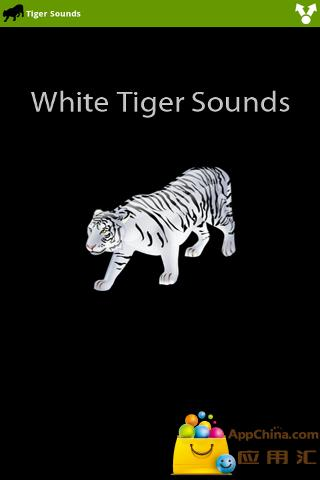 白老虎的声音