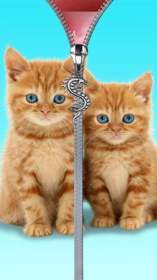 猫锁屏。拉链。截图2