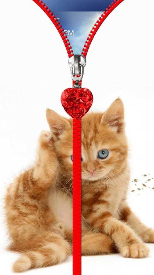 猫锁屏。拉链。截图3