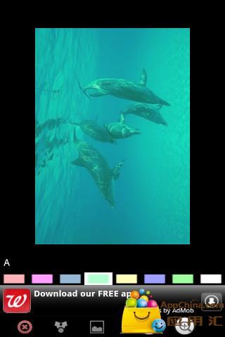 有趣的海豚 個人化 App-愛順發玩APP