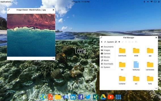 Leena Desktop UI截图0