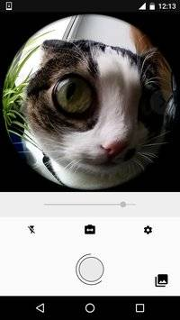 Fisheye Lens截图8