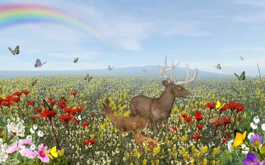 鹿的一生截图2