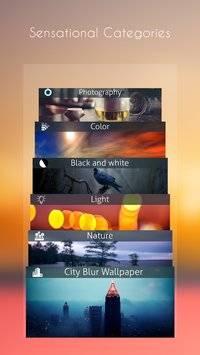 Blur Wallpapers截图1
