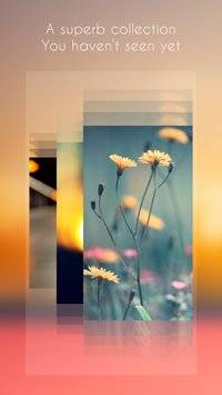 Blur Wallpapers截图3