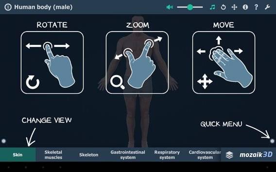 Human body (male) VR 3D截图6