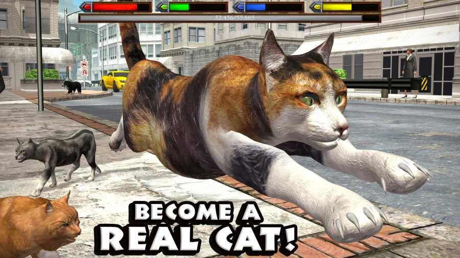 终极猫咪模拟截图0