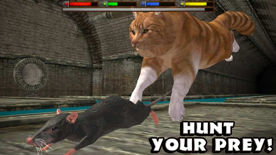 终极猫咪模拟截图1