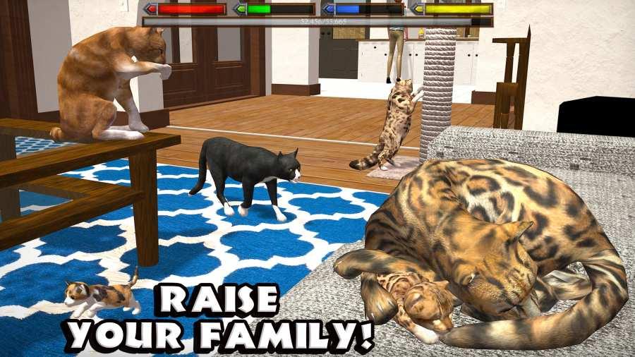 终极猫咪模拟截图2