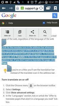 Auto Translation截图5
