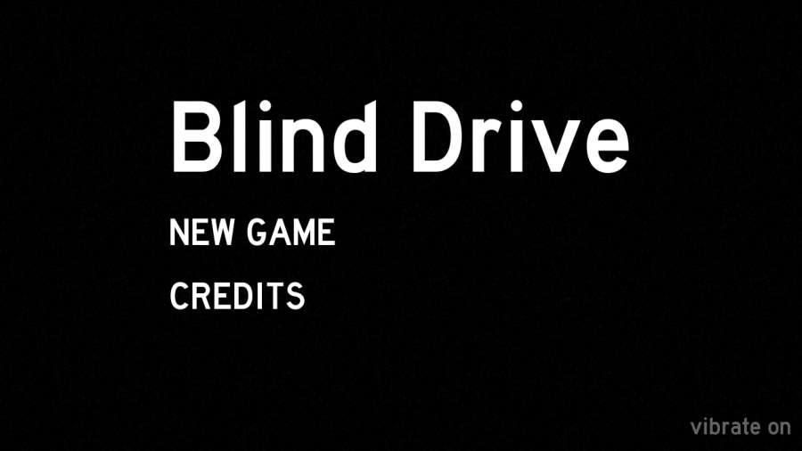 盲驾驶截图2