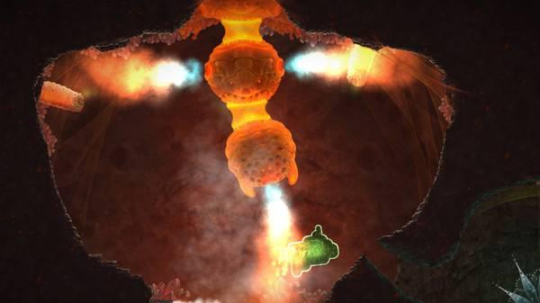 蘑菇11截图2