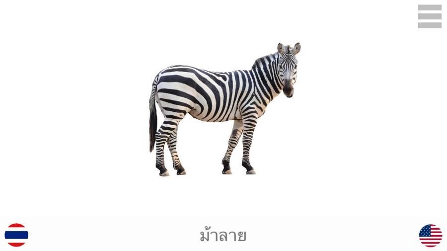 娱乐和学习 泰国