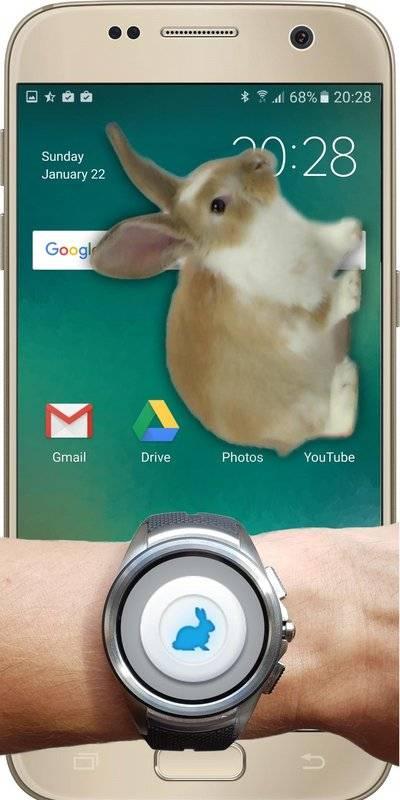 兔子在手机可爱的笑话截图2