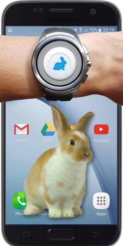 兔子在手机可爱的笑话截图3