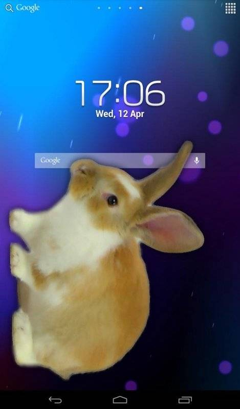 兔子在手机可爱的笑话截图4