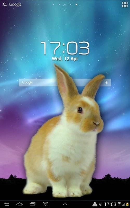 兔子在手机可爱的笑话截图7