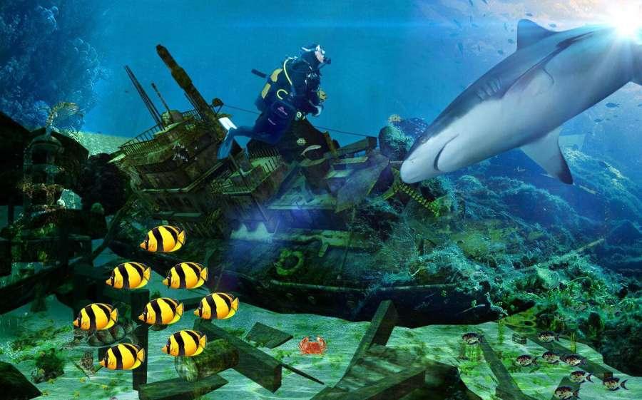 鲨鱼模拟器巨齿鲨截图5
