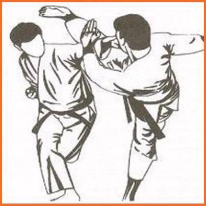 武术技巧截图1