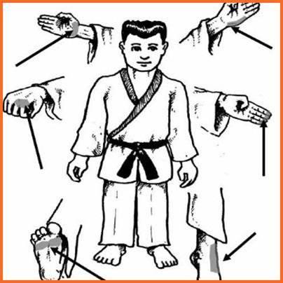 武术技巧截图2
