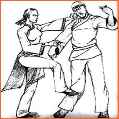 武术技巧截图3