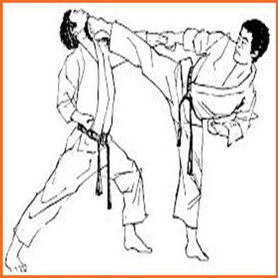 武术技巧截图4