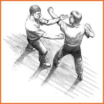 武术技巧截图5