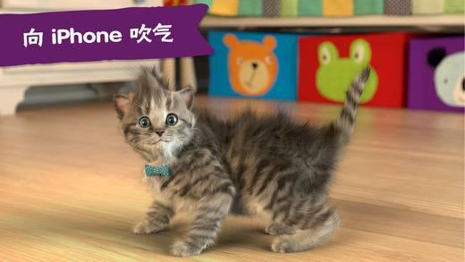 Little Kitten - 我最喜爱的猫猫截图3